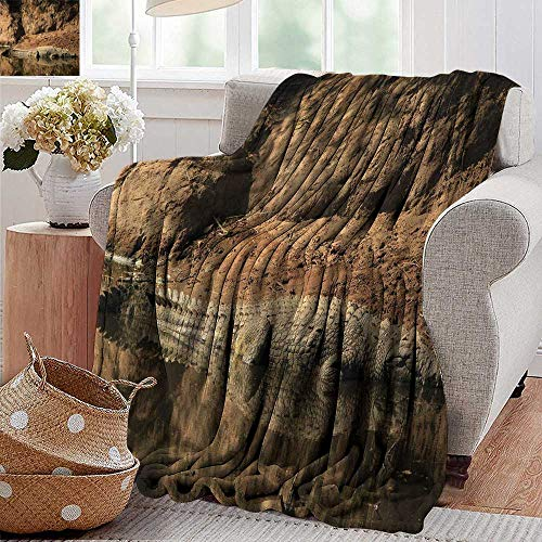 - XavieraDoherty Summer Blanket,Africa,Nile Crocodile Swimming in The River Rock Cliffs Tanzania Hunter Geography Print,Brown Tan,Lightweight Breathable Flannel Fabric,Machine Washable 30