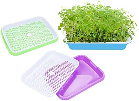 Oysir Seed Sprouter Tray Soil Free Wheatgrass Grower Tray Hydroponics Seed Germination Tray For Garden Plants Grow Plate Home Kitchen