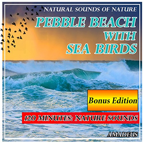 - Pebble Beach with Sea Birds: Natural Sounds of Nature: Bonus Edition