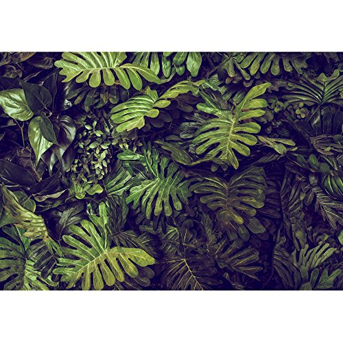 wall26 - Green Monstera Leaves Texture for Background - Top View - in Dark Tone. - Removable Wall Mural | Self-Adhesive Large Wallpaper - 100x144 inches by wall26 (Image #1)