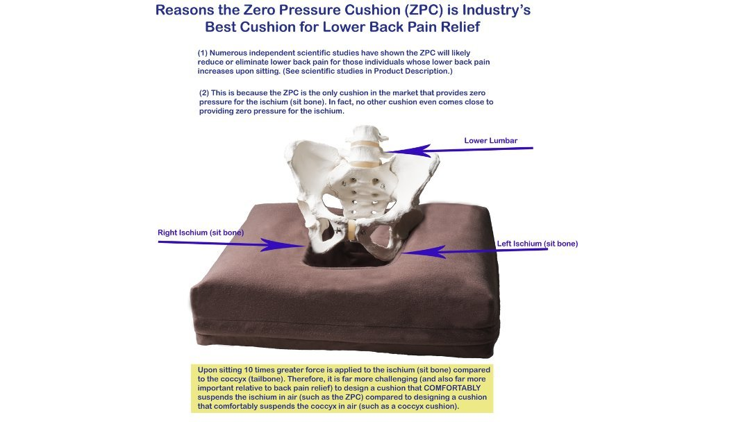 Zero Pressure Cushion Shown By Scientific Studies As Industry S Best Back Pain Relief