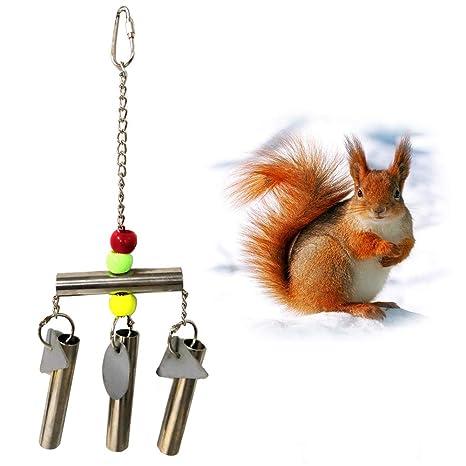 Steellwingsf - Timbre de Metal para Mascotas, con Espejo para ...