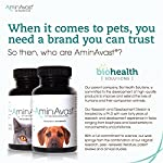 AminAvast Kidney Support Supplement for Cats and Dogs, 300mg - Promotes and Supports Natural Kidney Function - Supports Health and Vitality - Easily Administered - 60 Sprinkle Capsules 14