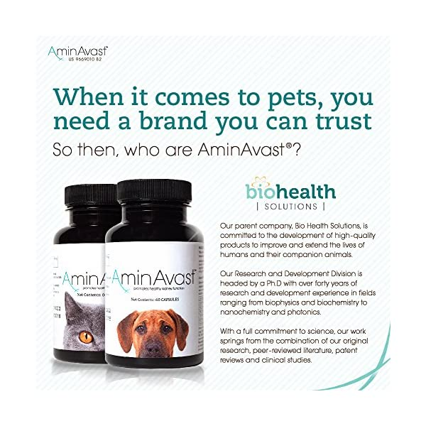 AminAvast Kidney Support Supplement for Cats and Dogs, 300mg - Promotes and Supports Natural Kidney Function - Supports Health and Vitality - Easily Administered - 60 Sprinkle Capsules 7