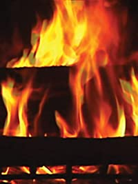 Amazon.com: Digital Fireplace: Unavailable, Mountainman Distributors