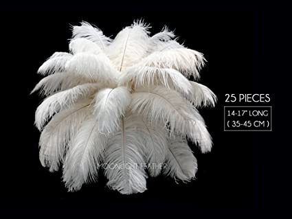 Amazon Moonlight Feather 25 Pieces 14 17 Off White Ostrich