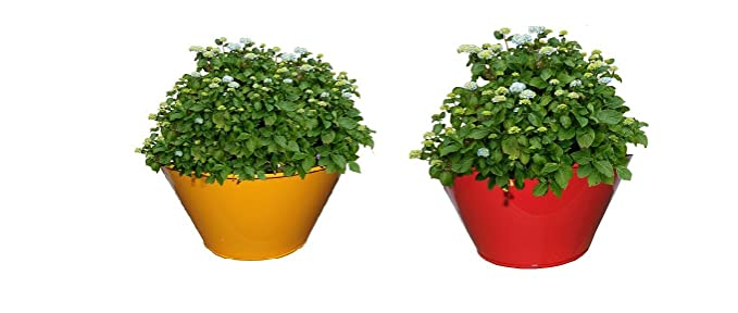 First Smart Deal Metal Table Top Round Planter Multi - Pack Of 2