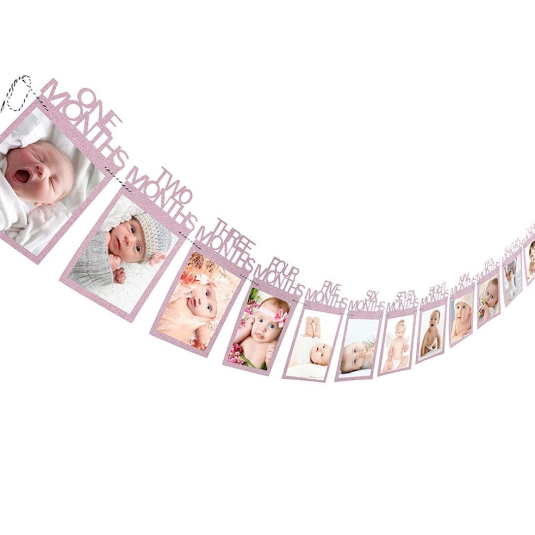 Culater® New Baby Kids 1st Birthday Gift 1-12 Months Photo Banner DIY Wall Hanging Picture Album Pink Culater®-S79