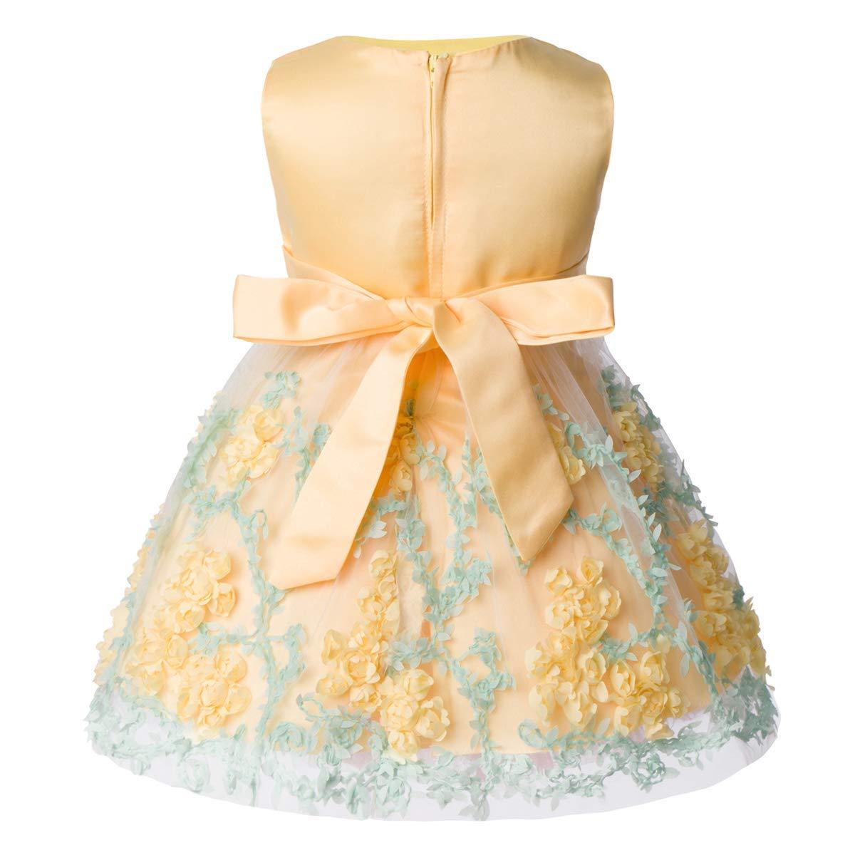 FYMNSI Vestido de Niña de Las Flores de Fiesta de Cumpleaños de Princesa Tutú de Encaje de Bebé para Niños Casual Elegante Vestido Sin Mangas Ropa Falda ...