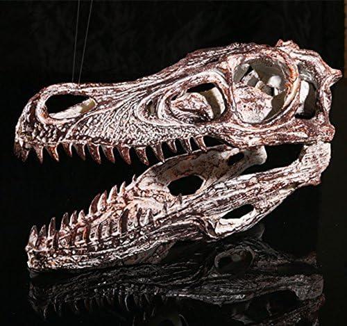 MagiDeal Cr/âne R/éplique Velociraptor R/ésine Mod/èle T/ête Collection D/écor /à Bar de Maison