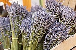 Zziggysgal Dried Lavender Bundle