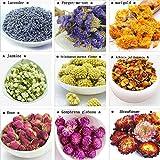 TooGet Flower Petals and Buds Includes Lavender, Forget-me-not, Marigold, Jasmine, Scindapsus aureus Flower, Albizia julibrissin, Rose, Gomphrena globosa, Strawflower, Kinds of Crafts