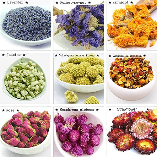 TooGet Flower Petals and Buds includes Lavender, Forget-me-not, Marigold, Jasmine, Scindapsus aureus flower, Albizia julibrissin, Rose, Gomphrena globosa, Strawflower, Perfect For All Kinds of Crafts