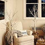 5 Foot Warm White LED Birch Style Plug-in Tree with 48 Bright LEDs