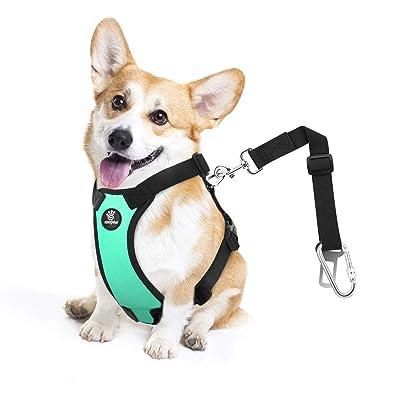 VavoPaw Dog Vehicle Safety Vest Harness