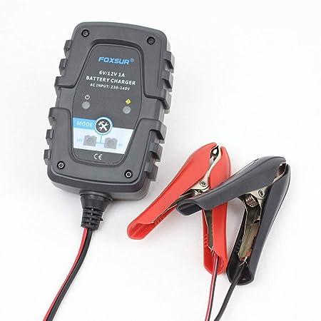 ZMM Cargador de batería de Coche, 6V 12V 1A automático ...