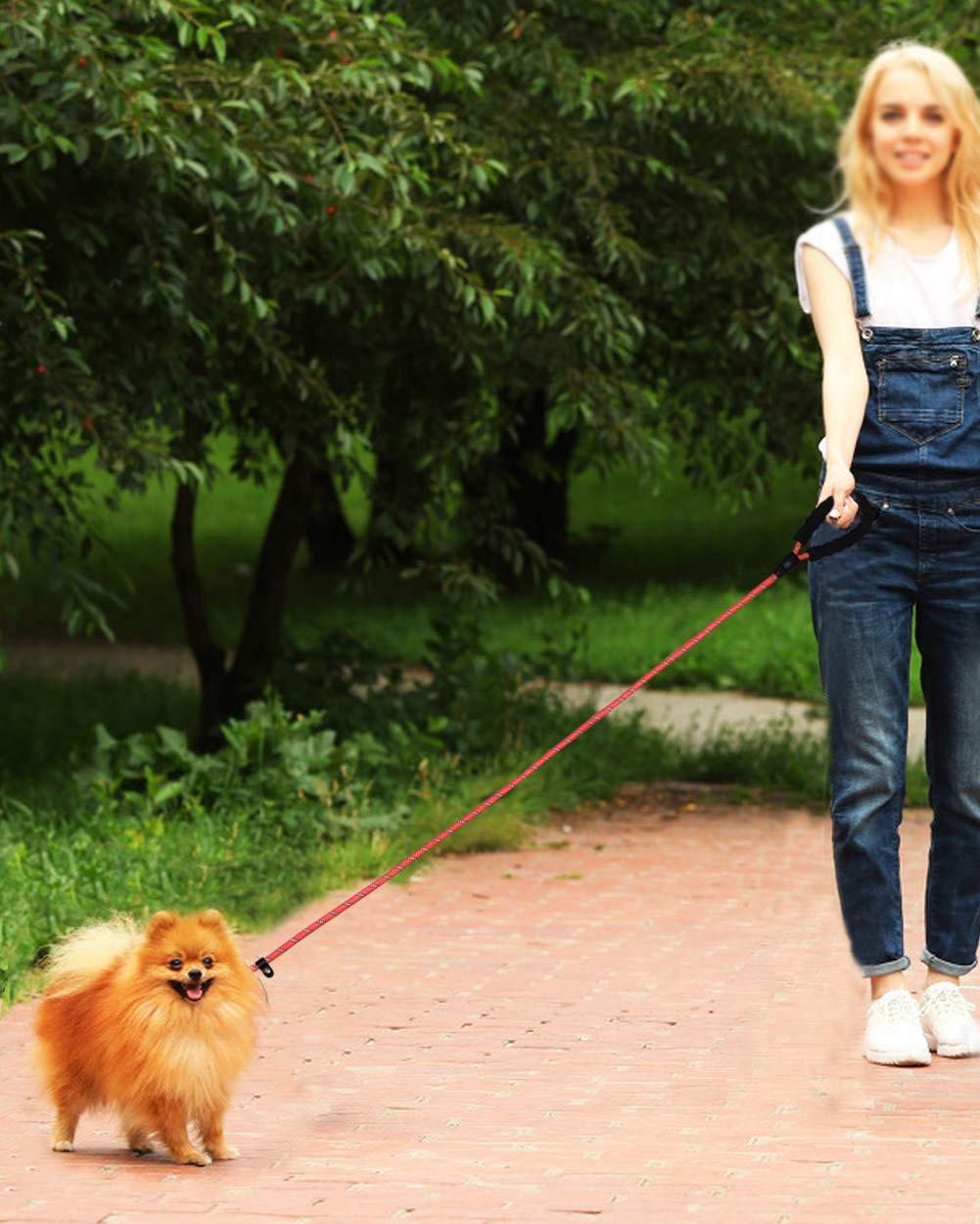Corda al guinzaglio per Cani,Corda rampicante Riflettente Rotonda Durevole,Scivolare i guinzagli,Colletto e Guinzaglio Due in Uno per Cani Piccoli e Medi 1.8M Verde