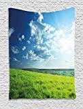 asddcdfdd Nature Tapestry, Refreshing Meadow Valley under Cloud Sun Sky Spring Grass Country Image, Wall Hanging for Bedroom Living Room Dorm, 40 W x 60 L Inches, Lime Green Light Blue