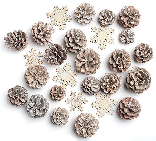 Factory Direct Craft Package of Winter White Washed Pinecones and Snowflakess