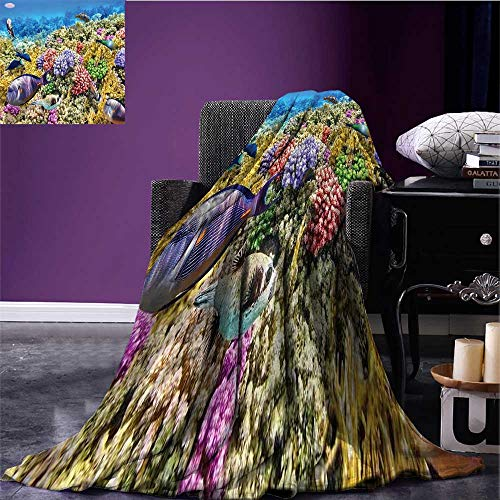 - Ocean Printing Blanket Undersea Scenery Colorful Sponge Coral Reefs Tropical Fishes and Jellyfish Image Print Summer Quilt Comforter Multicolor Bed or Couch 62