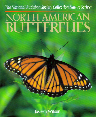 National Audubon Society Field Guide to North American Butterflies (National Audubon Society Field Guide Series) - Book  of the National Audubon Society Field Guides
