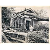 1944 Babylon Fred Wohn Wealth Kindling Wood Long Island Scenes Press Photo