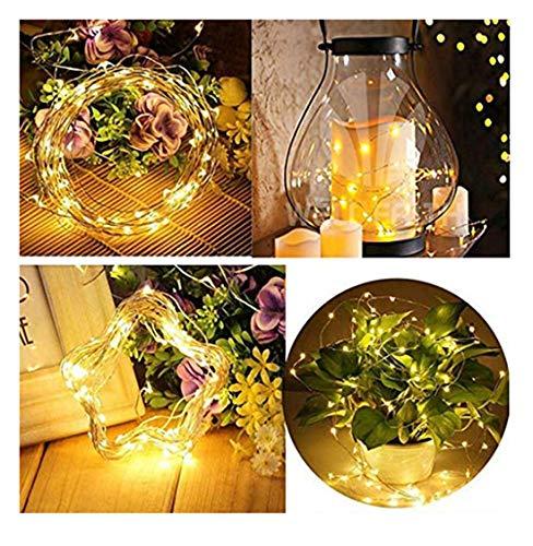 Olive Garden String Lights in US - 5