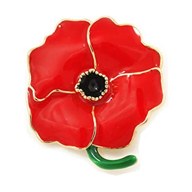 Amazon revolity large poppy flower brooch lapel badge pin gold revolity large poppy flower brooch lapel badge pin gold brooch for women red enamel flower pin mightylinksfo