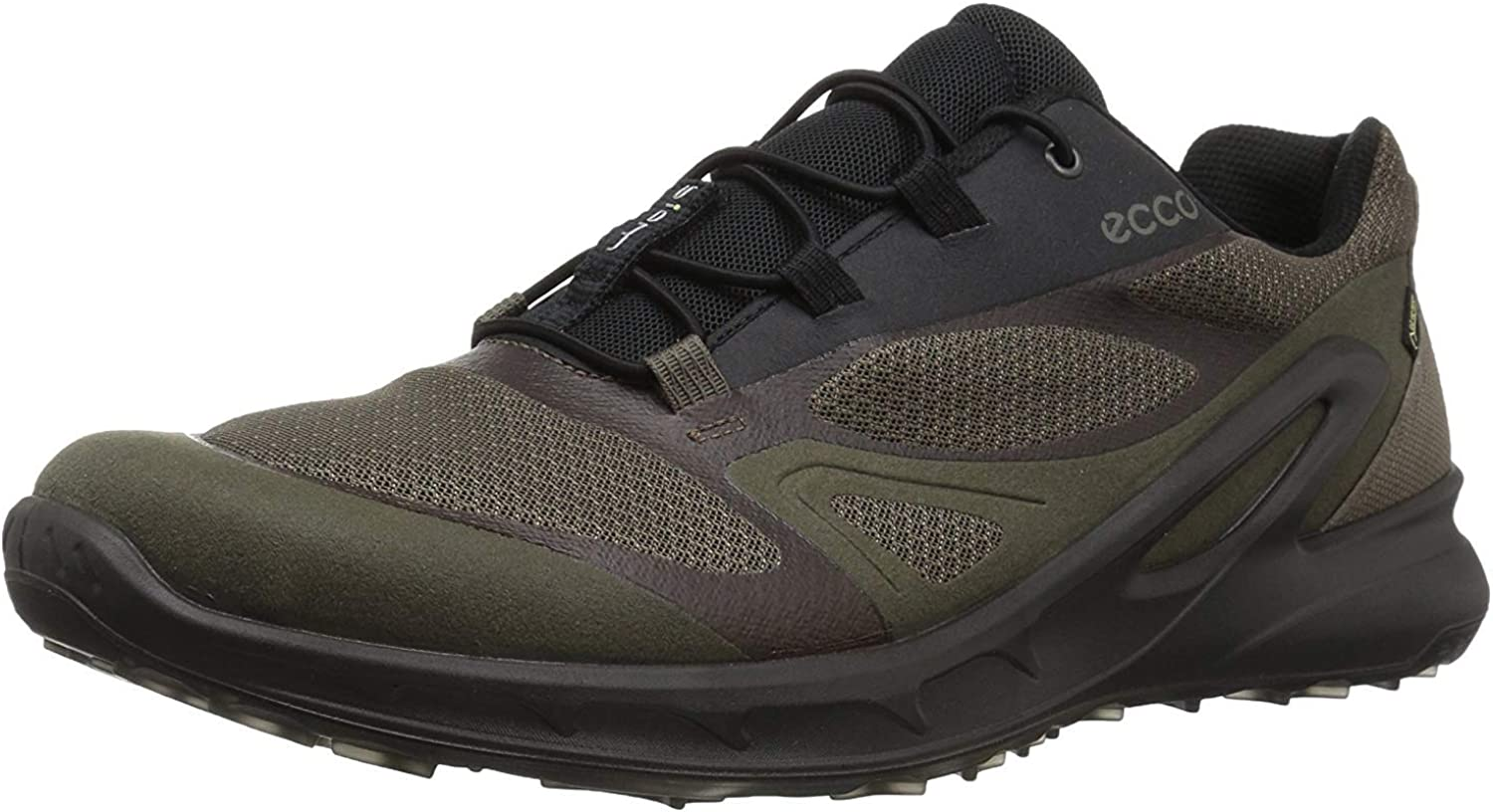 ECCO Men s Biom Omniquest Gore-tex Hiking Shoe