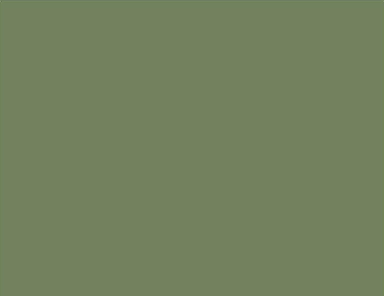 Barniz para azulejos (Color RAL 6011, acabado brillante, reseda verde laclife