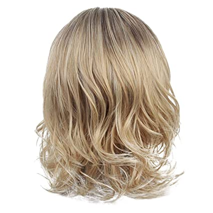 Amazon.com: HowLoo Wigs for Womens Fashion Front lace Wig ...