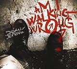 Am I Walking Wrong? By Dusan Jevtovic (2013-11-04)
