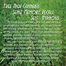 Free High Cannabis Sense Memory Recall Self Hypnosis