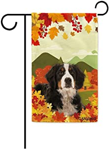 BAGEYOU Hello Fall in The Countryside with My Love Dog Bernese Mountain Dog Decorative Garden Flag Autumn Maple Leaf Banner for Outside 12.5X18 Inch Printed Double Sided