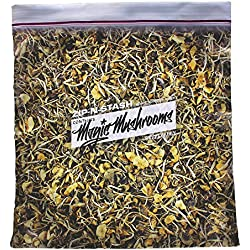 Shroom Stash - Baggie of Psychedelic Mushrooms Pillowcase