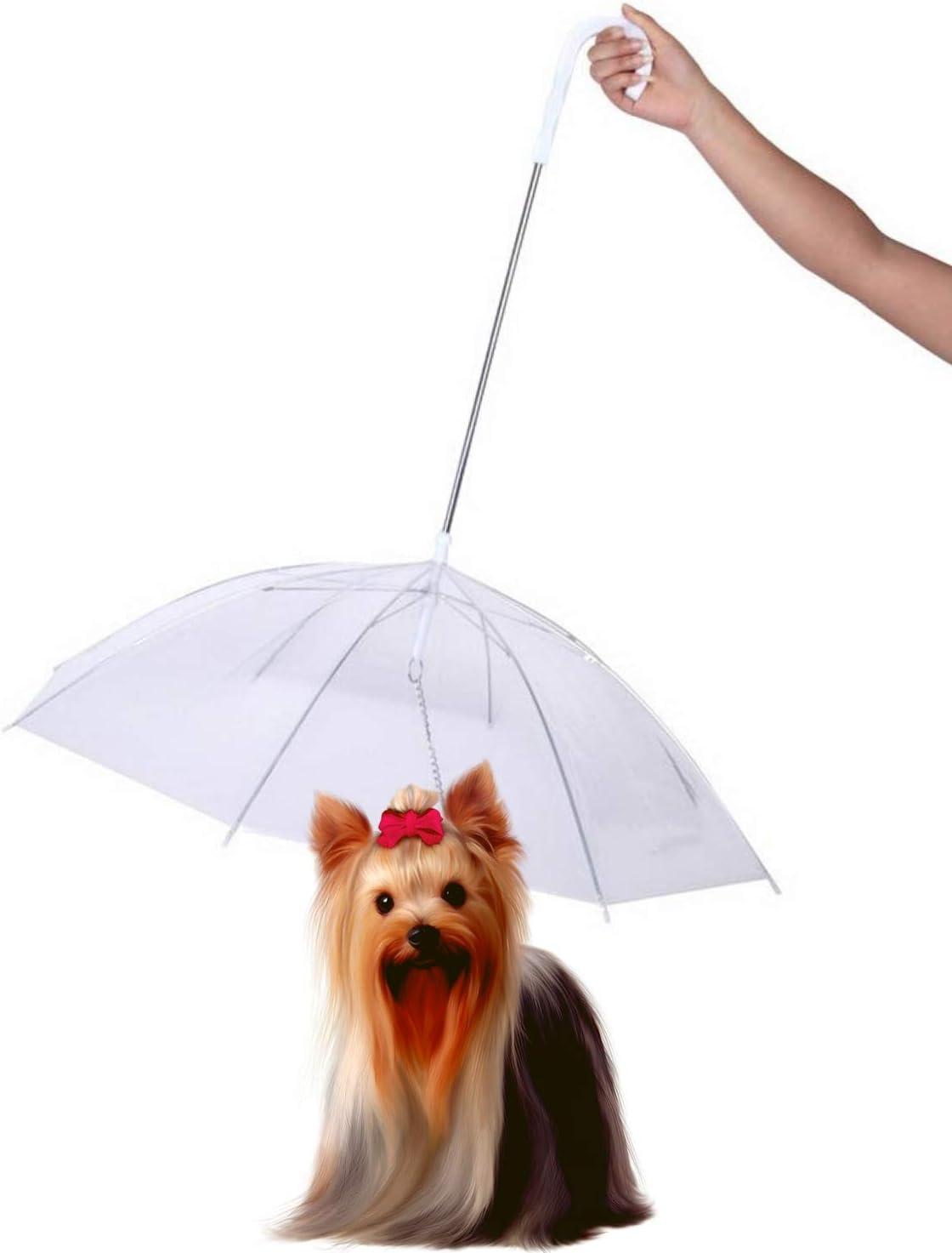 Best Dog umbrella with leash 6