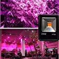 Warm White, 50w : LED Grow Light 10W 20W 30W 50W LED Flood Spotlight Outdoor Projector Reflector Wall Lamp 110v 220V Hydroponics Garden Square