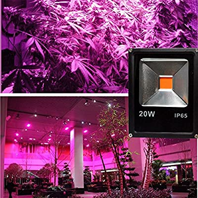Cold White, 30w : LED Grow Light 10W 20W 30W 50W LED Flood Spotlight Outdoor Projector Reflector Wall Lamp 110v 220V Hydroponics Garden Square