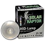 ECONLUX SolarRaptor 35W PAR30 HID-Flood-Strahler