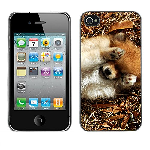 Premio Sottile Slim Cassa Custodia Case Cover Shell // F00016027 chiot Fluffy // Apple iPhone 4 4S 4G