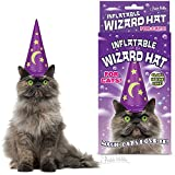 Mystical Glow In The Dark Inflatable Wizard Hat For Cats