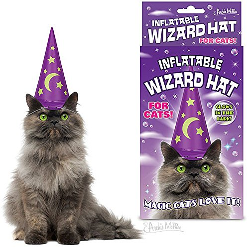 Mystical Glow In The Dark Inflatable Wizard Hat For Cats ()