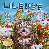 Lil Bub 2017 Wall Calendar