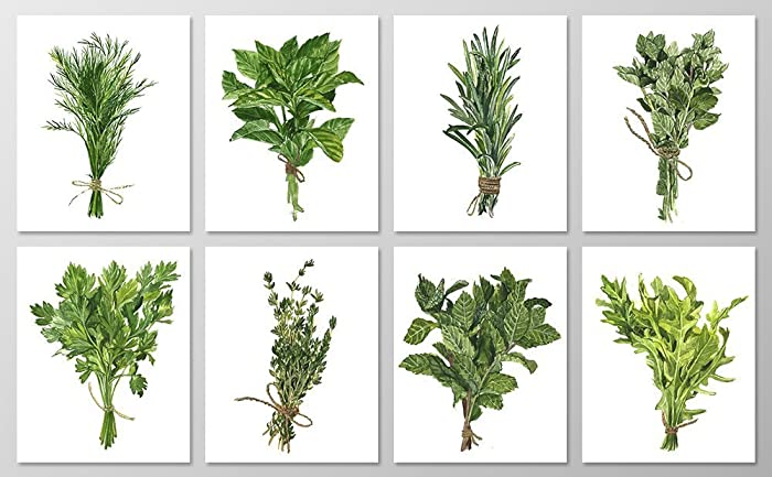 Amazon.com: Herb wall art #A076 - Set of 8 Botanical art prints ...