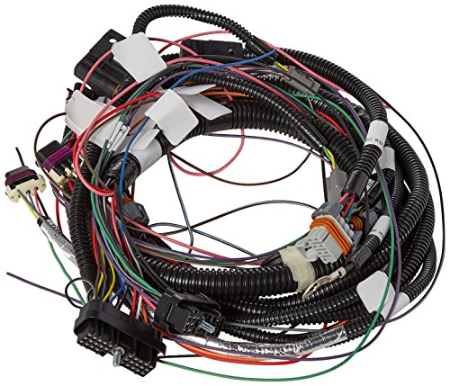 (FAST 301972 Wiring Harness for LS1/LS6)