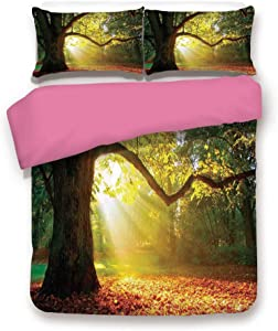California King Size Pink Back Duvet Cover Set,Majestic Mighty Oak Tree with Largely Broader Leaves Forest Sun Rays Nature Decorative 3 Piece Bedding Set with 1 Pillow Sham,Orange Green Brown
