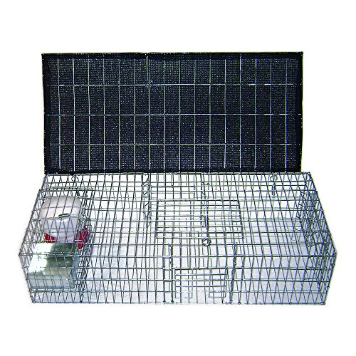 Pigeon Trap - Bird B Gone Pigeon Trap with Shade, Food and Water Containers