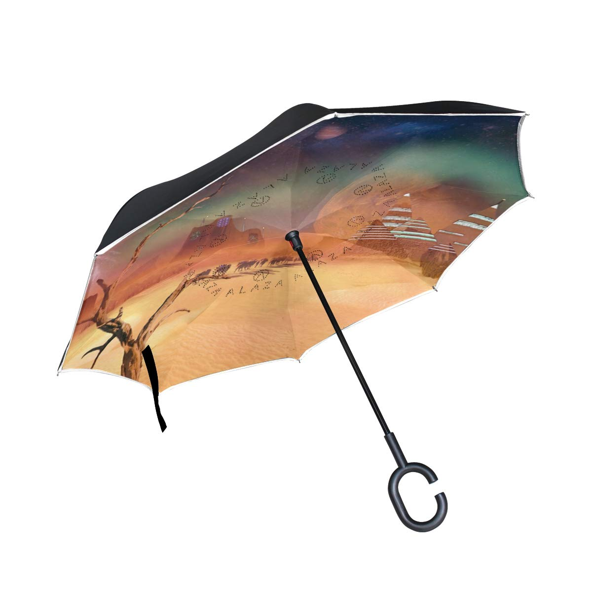 All agree 逆傘 小さな赤いバラ 逆さ傘 リバーシブル ゴルフ 車 旅行 雨 アウトドア ブラック One Size カラー5 B07HMQR9TH