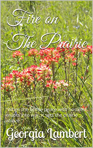 Fire on The Prairie: Fannin County Texas by [Lambert, Georgia]