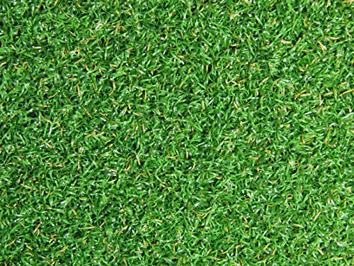4 Feet x 15 Feet Professional Synthetic Turf Grass Nylon Practice Putting Green by PREMIUM PRO TURF (Image #2)